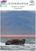 Смотреть вырезку из номера 109 - Остров Врангеля